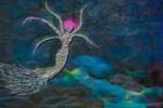 meduse-2
