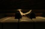 la-plume-et-le-piano-2018
